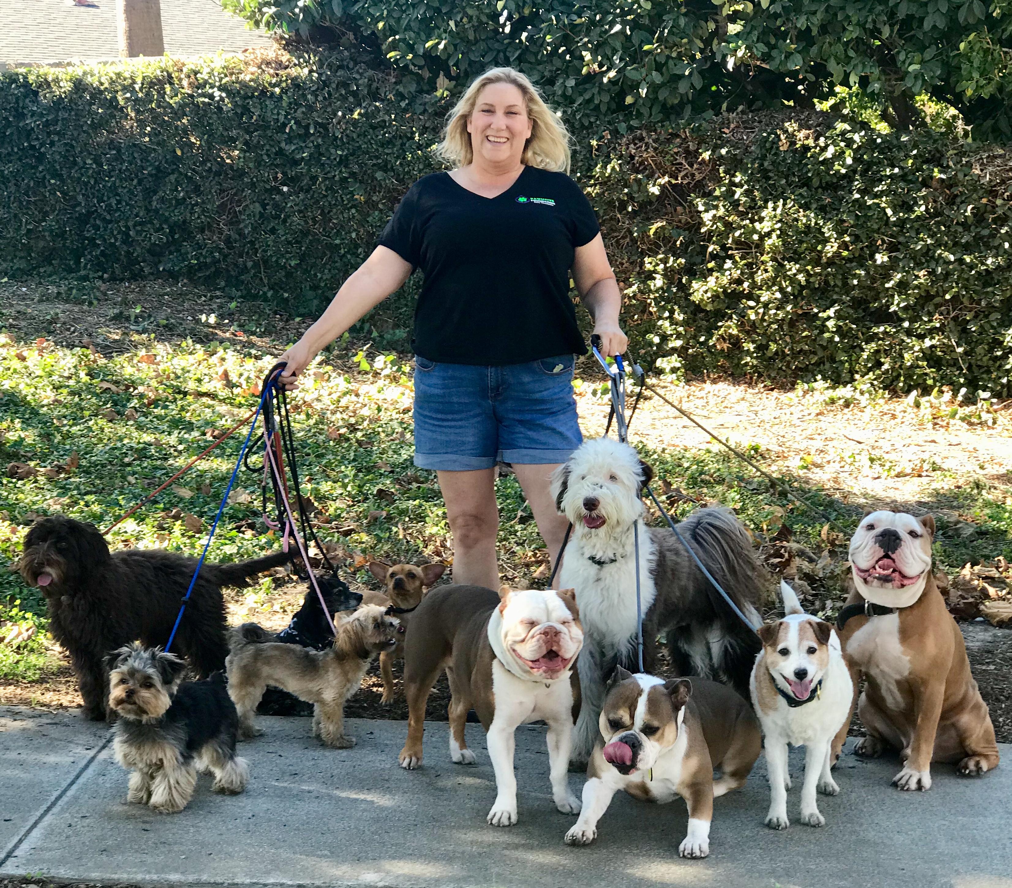 Pawsitive Changes Dog Training